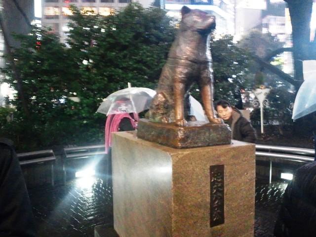 http://www.iyokanto.jp/report/11030701.JPG